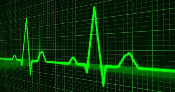 Kardio podstawowy