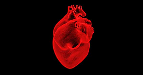 Kardio rozszerzony